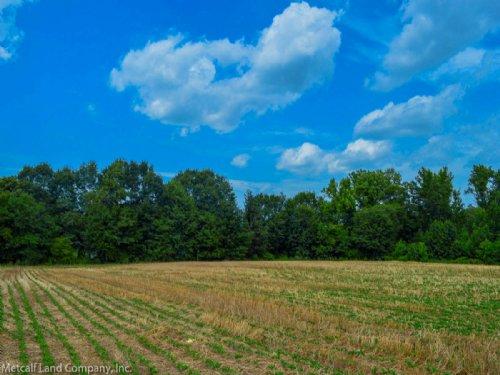 11.5 Acre Mini-Farm : Gaffney : Cherokee County : South Carolina
