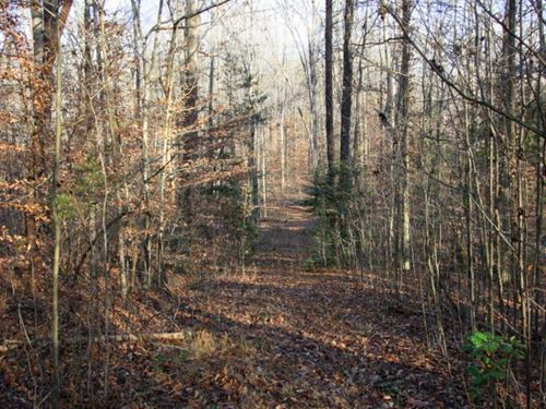 12.6 Acre Riverfront Property : Montpelier : Hanover County : Virginia