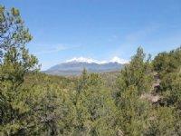 8.8 Acres San Luis Estates South : San Luis : Costilla County : Colorado