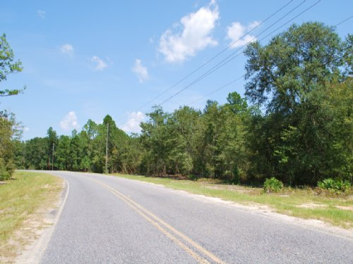 10 Acres Longford Road : Jesup : Wayne County : Georgia