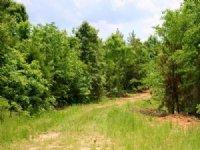 7.01 Acre Bluebird Ranch