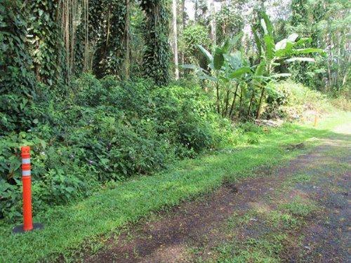 1/4 Acre Nanawale Estates, Hibiscus : Pahoa : Hawaii County : Hawaii