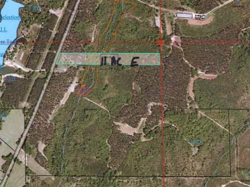 11 Acres Of Great Hunting Tract : Banks : Pike County : Alabama