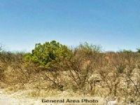 0.75 Acre Lot In Rio Rico