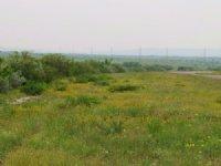Dos Senderos 10 : Brackettville : Kinney County : Texas