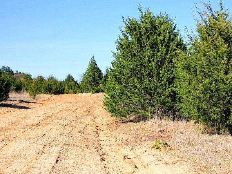 Montgomery Ranch : Marietta : Love County : Oklahoma