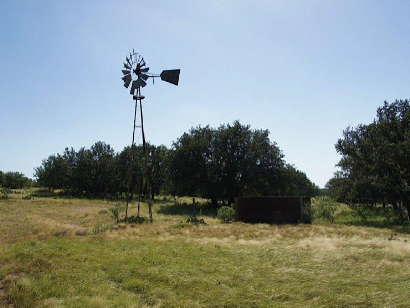 Live Oak Creek  18.37 Ac W/ Water : Eden : Concho County : Texas