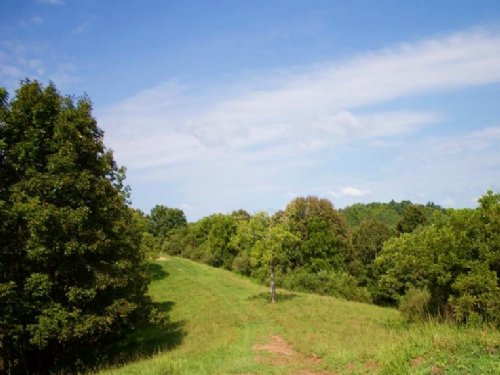 5.1 Acres Heritage Hollow : Spencer : Roane County : West Virginia