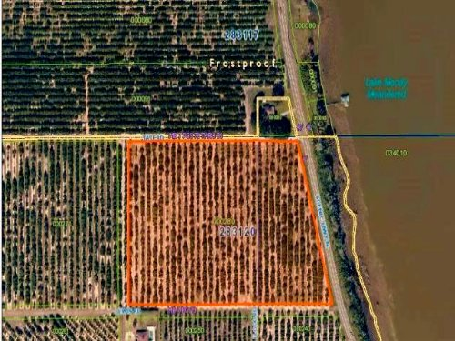 14 Acre Valencia Grove  Frostproof : Frostproof : Polk County : Florida