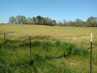 County Road 3316a Tract
