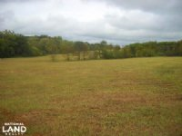 Windhaven Lakes 4 Acre Lot : Burkville : Lowndes County : Alabama