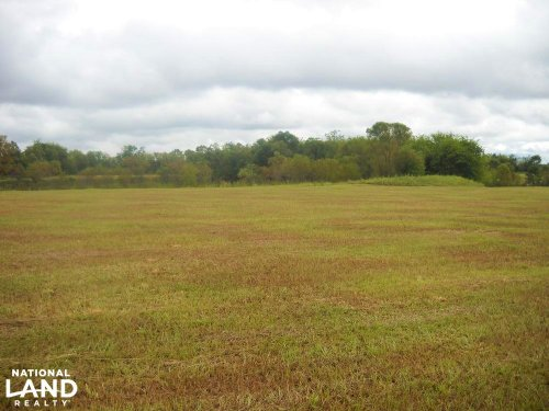 Windhaven Lakes 3 Acre Lot : Burkville : Lowndes County : Alabama