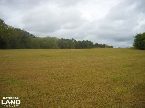 Windhaven Lakes 4.7 Acre Lot : Burkville : Lowndes County : Alabama
