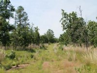 9 Acres Indian Ridge Ii. Terms $225