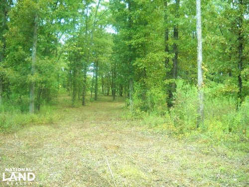 Hope Hull Homesite or Mini-Farm : Hope Hull : Lowndes County : Alabama