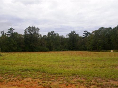 5.33 Acre Home Site, Pike County, M : Summit : Pike County : Mississippi