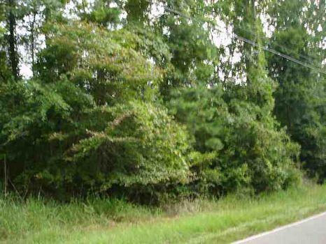 13.28 Acres : Eatonton : Putnam County : Georgia
