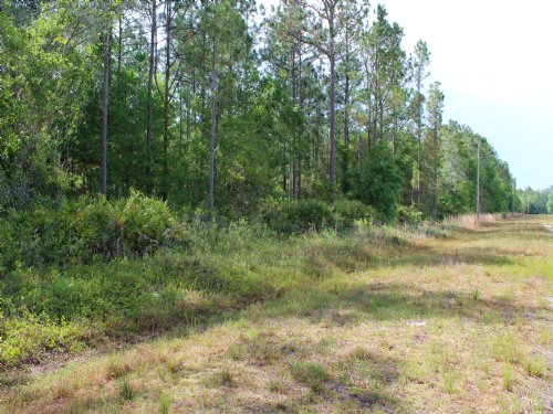 3.43 Acres : Keystone Heights : Clay County : Florida