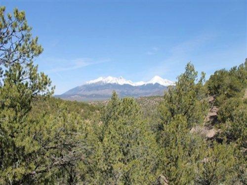 5.21 Acres Sangre De Cristo Ranches : Fort Garland : Costilla County : Colorado