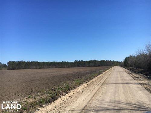 Worley Farm Lot 3 : Galivants Ferry : Horry County : South Carolina