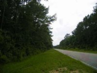Vacant Land For Sale In Perry, Fl
