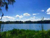 Lakefront Acreage Sale 10/22