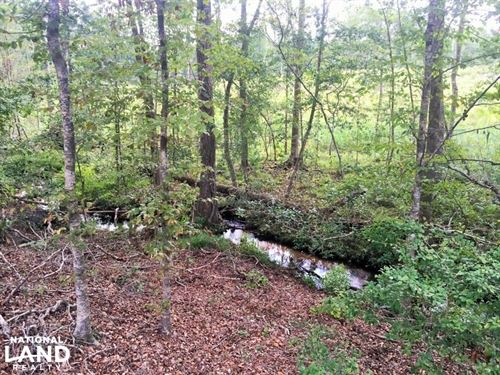 Barnwell Homesite & Small Hunting E : Barnwell County : South Carolina