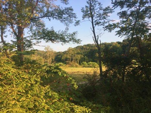 10 Acres Scenic Pasture : Nelsonville : Athens County : Ohio