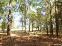 Fellowship Farms - C14 : Ocala : Marion County : Florida