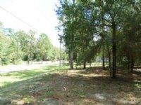 Fellowship Farms - C15 : Ocala : Marion County : Florida