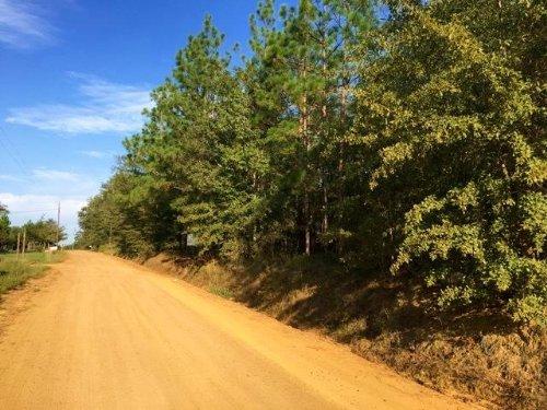 14.47 Acres : Lyons : Toombs County : Georgia