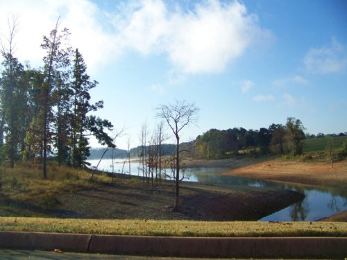 Cherokee Lake Front Lot : Rutledge : Grainger County : Tennessee