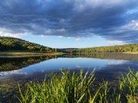 Lakefront Land - Finger Lakes