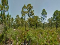 Two Lots Together For Sale In Punta