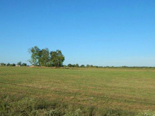 Prime 10.25 M/L Acres : Tahlequah : Cherokee County : Oklahoma