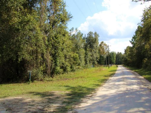 6.92 Acres East Of Gainesville : Earleton : Alachua County : Florida