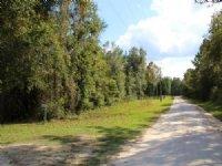 6.92 Acres East Of Gainesville : Earleton : Alachua County : Florida