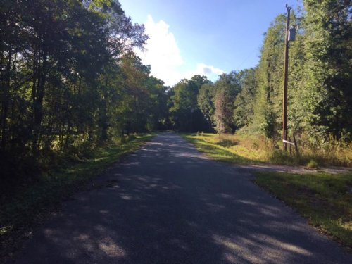 Nice Wooded Lot With Well & Septic : Lake City : Columbia County : Florida