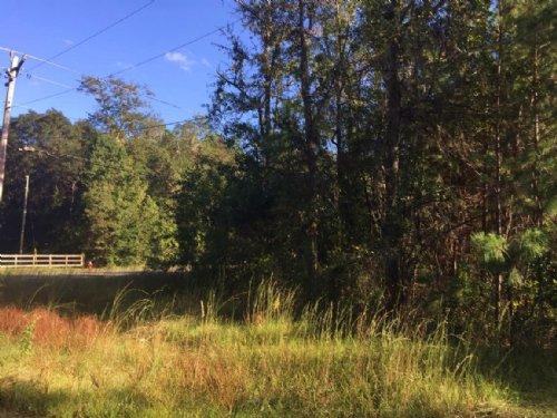 Corner Lot Established Neighborhood : Lake City : Columbia County : Florida