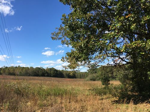 7 Acres Nebo Road : Dallas : Paulding County : Georgia
