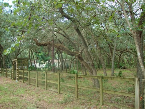 Nice Lot Ready For Your New Home : Chiefland : Levy County : Florida