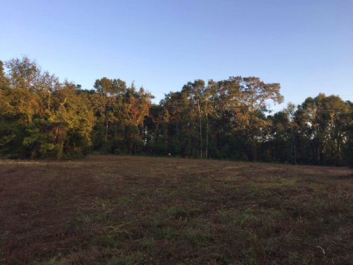 Suwannee Valley Land For Sale : Lake City : Columbia County : Florida
