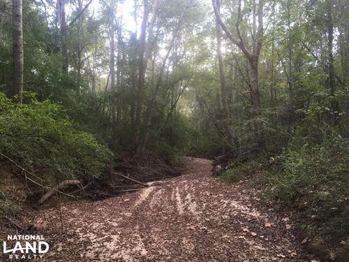 Noland Creek Homesite, Lot 8 : Prattville : Autauga County : Alabama