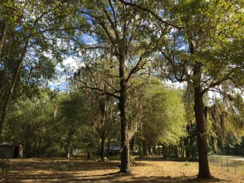 Residential Lot For Sale : Lake City : Columbia County : Florida