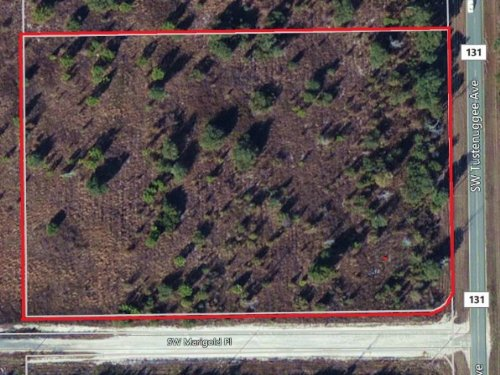 6 Acres - High And Dry - Paved Road : Fort White : Columbia County : Florida