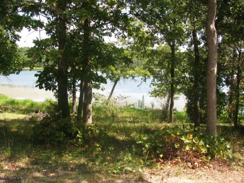 3 Lots In Mineola, Texas Near Encha : Mineola : Wood County : Texas