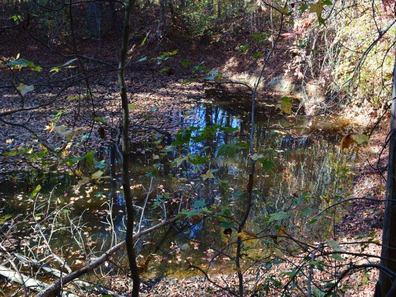 9.88 Acres On Lake Bowen With Pond : Inman : Spartanburg County : South Carolina