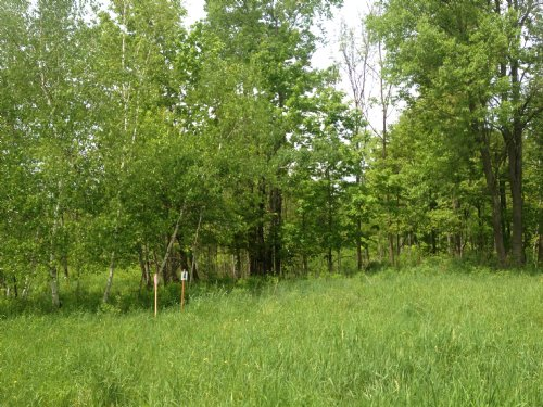 Hunters Camp Spot : Croghan : Lewis County : New York