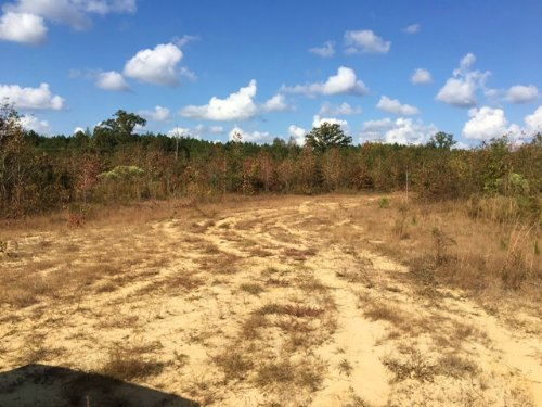 10 Acres For Sale : Starkville : Oktibbeha County : Mississippi