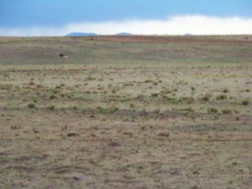 Cheap Lot For Sale In Subdivision : Los Lunas : Valencia County : New Mexico